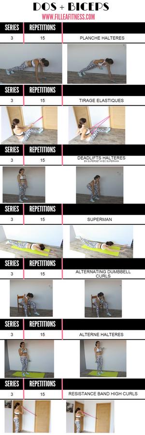 exercices biceps dos programme